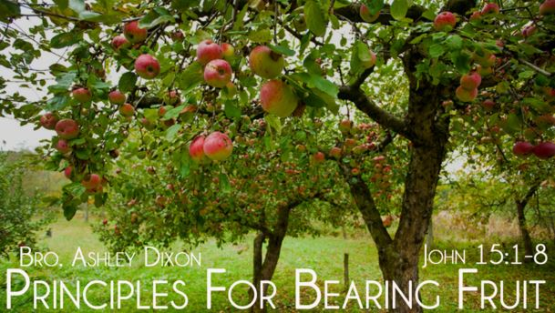Principles for Bearing Fruit